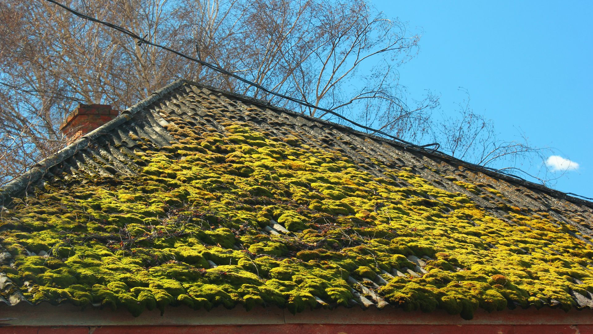 Moss Removal Mansfield